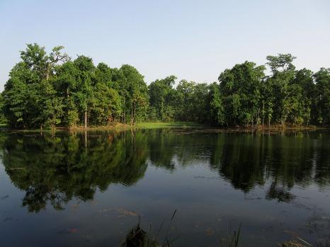 Chitwan (63)