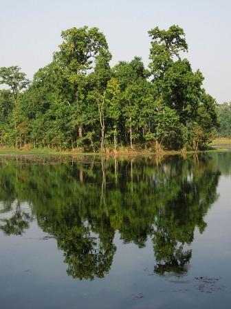 Chitwan (65)