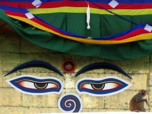 Swayabunath (84)